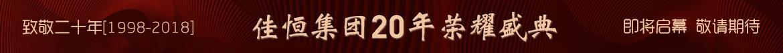 活动:20周年盛典