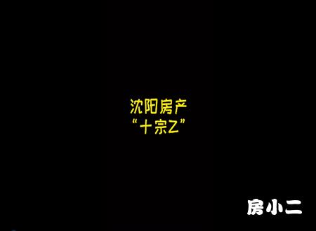 """沈阳房产""""十宗最"""""""