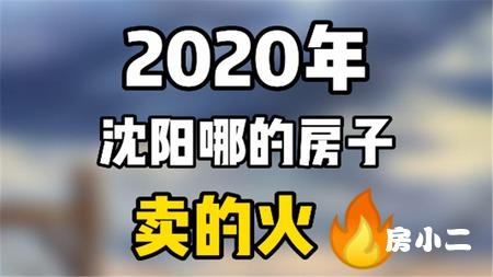2020年沈阳哪的房子卖的火?