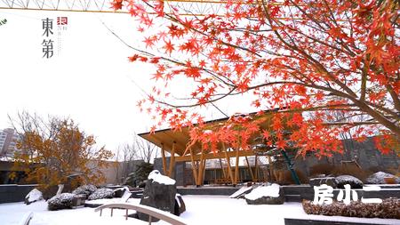 万科·东第园区雪景