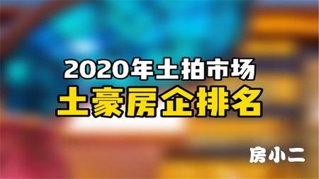 2020土拍市场 土豪房企排名